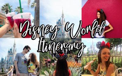 My Walt Disney World Itinerary   Lifestyle